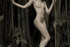 Wood Nymph V