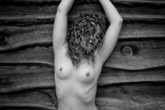 Nude and Wood